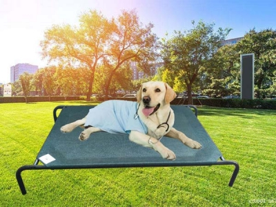 Hot selling PE Rectangle Pet Bed