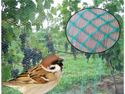New style knitting anti bird net with Super durability