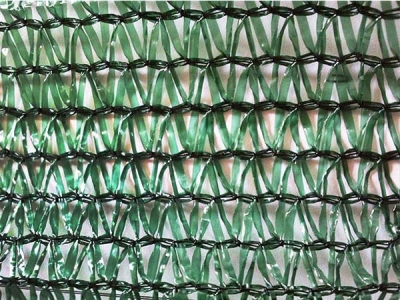 Hot Selling 55-70gsm Green sunshade net